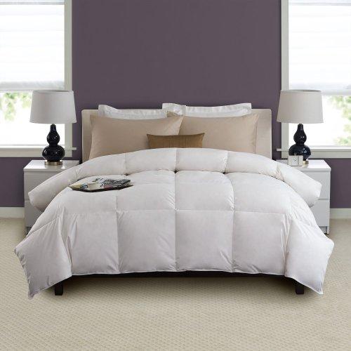 Twin Hotel Down Comforter
