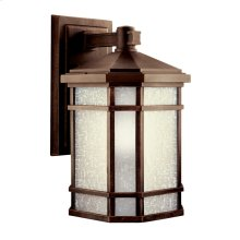 Cameron Collection Outdoor Wall 1Lt Fluorescent