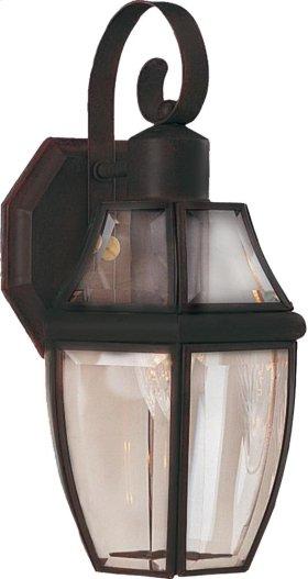 South Park 1-Light Outdoor Wall Lantern