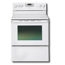 Self Cleaning Electric Range