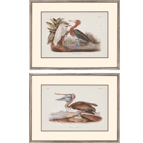 Audubon Egrets Pk/2