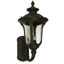 Tori Collection Eleven-Inch Incandescent Exterior