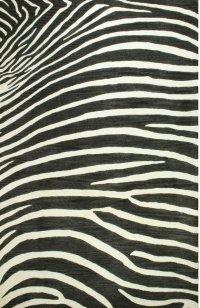 Safari Serengeti Product Image