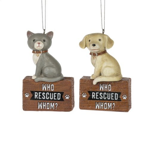 """Who Rescued Whom"""" Cat & Dog Ornament. (12 pc. ppk.)"