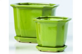 Celadon Sucre Petits Pots with Attached Saucer - Set of 2