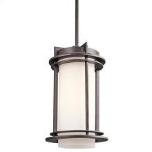 Pacific Edge Collection Outdoor Hanging Pendant 1Lt