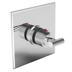Biscuit Square Thermostatic Trim Plate with Handle