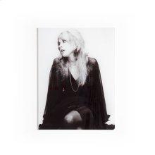 "18""x24"" Size Acrylic Style Stevie Nicks"