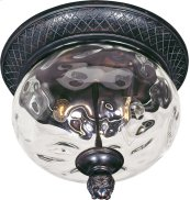Carriage House 2-Light Outdoor Ceiling Mount