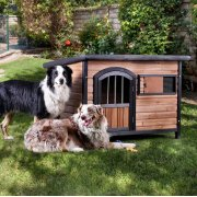 Carthage Pet House Product Image