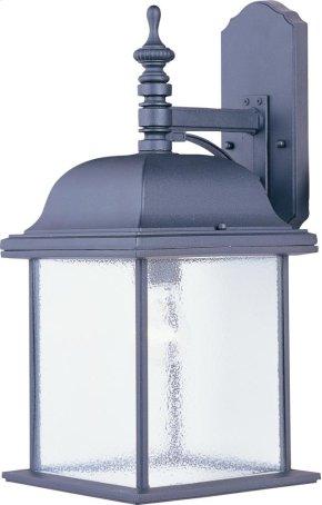 Senator 1-Light Outdoor Wall Lantern