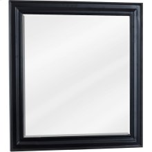 "22"" x 24"" Beveled glass mirror with Black finish."