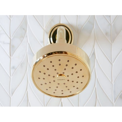 Air Induction Showerhead with Arm - Unlacquered Brass