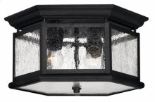 Black Edgewater Exterior Ceiling Mount