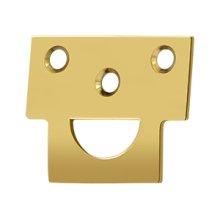 Universal Strike, Solid Brass - PVD Polished Brass