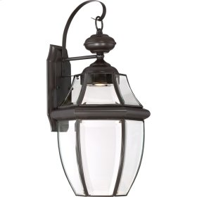 Newbury Clear LED Outdoor Lantern in Medici Bronze
