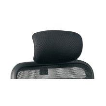 Mesh Headrest
