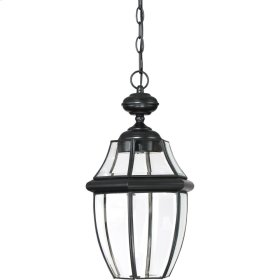 Newbury Clear LED Outdoor Lantern in Mystic Black