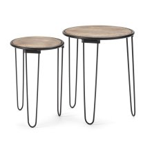 Rosana Accent Tables - Set of 2