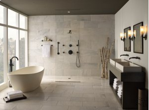 H 2 Okinetic® Wall Mount Handshower