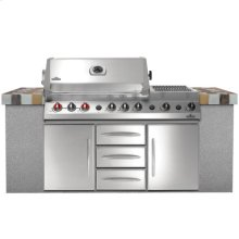 Built-in Grills BIPF600 Prestige V Series Built-in- NG STAINLESS