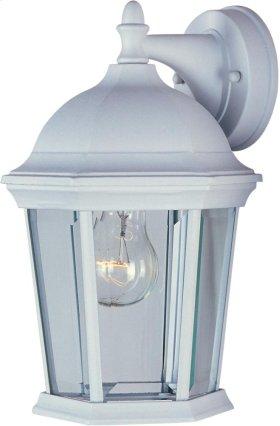 Builder Cast 1-Light Outdoor Wall Lantern