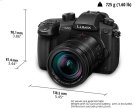 DC-GH5LK Micro Four Thirds Product Image