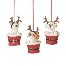 Puppy in Santa Cup Ornament (3 asstd).
