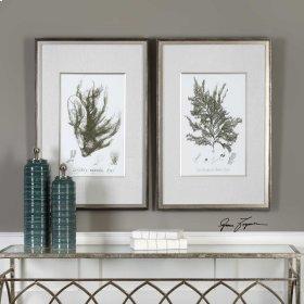 Sepia Seaweed, S/2
