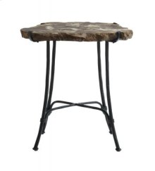 Petrified Wood Slab Side Table