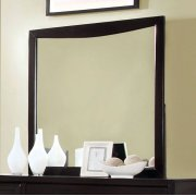 Snyder Mirror Product Image