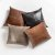 """Additional Bryant 20"""" Pillow in Refined Bourbon"""