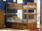 Columbia Bunk Bed Twin over Twin with Raised Panel Bed Drawers in Caramel Latte Product Image