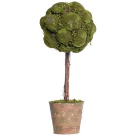 Moss Topiary in Clay Pot