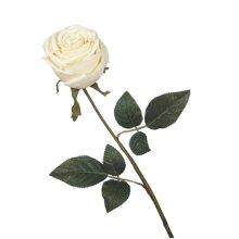 Ivory Rose Stem