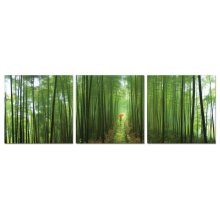 Modrest Forest 3-Panel Photo on Canvas