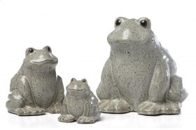 Medium Calm Frog