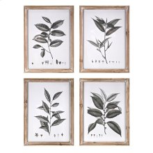 Aba Botanical Wall Decor - Ast 4