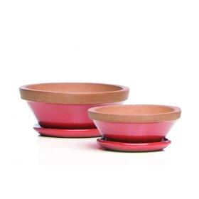 Beatrix Bowl w/ saucer, Poppy - Set of 2