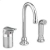 Monterrey Single Control Gooseneck Kitchen Faucet with Remote Valve and Side Spray - Polished Chrome