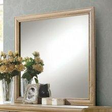 Renee Mirror