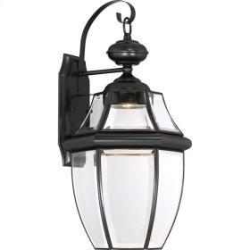 Newbury Clear LED Outdoor Lantern in Mystic Black
