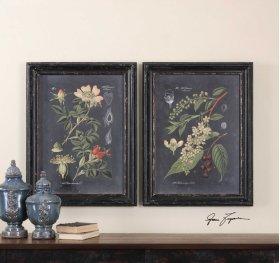 Midnight Botanicals Framed Prints, S