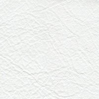 Caprone White Leather Product Image