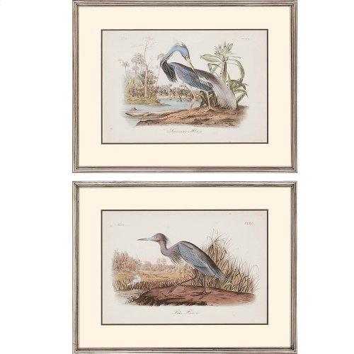 Audubon Herons Pk/2