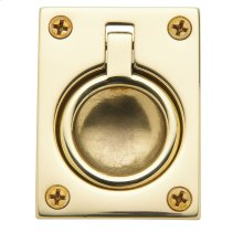 Polished Brass Flush Ring Pull
