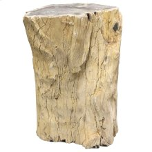 Natural Polished  17in X 18in X 19in Petrified Textured Wood Stool with a Top Polish