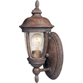 Knob Hill VX 1-Light Outdoor Wall Lantern