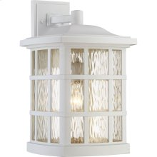 Stonington Outdoor Lantern in Fresco