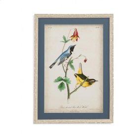 Blue Wood Warbler